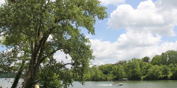 7 Great Picnic Spots in Downtown Branson